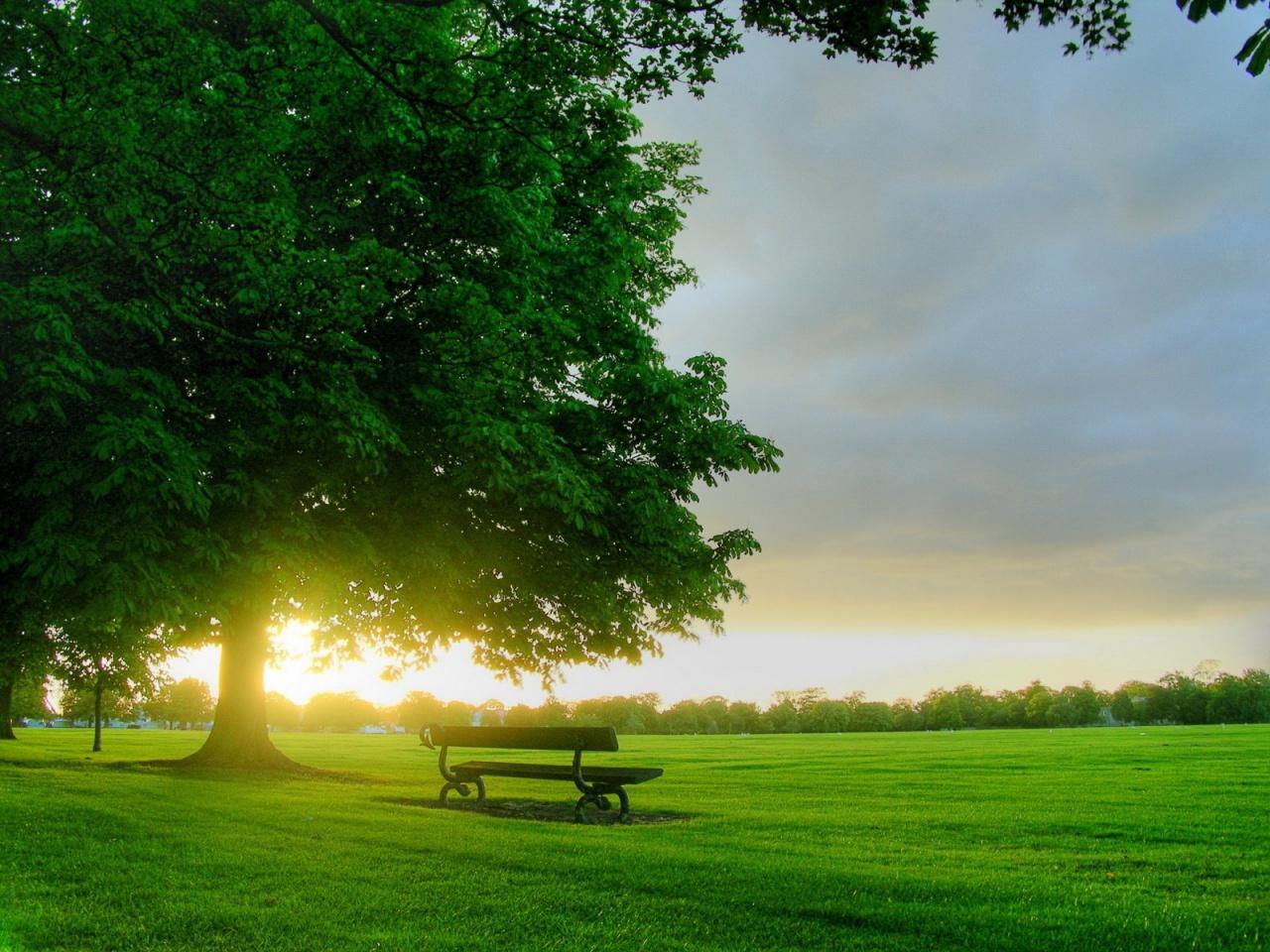 ws_Good_Morning_Sun_1280x1024